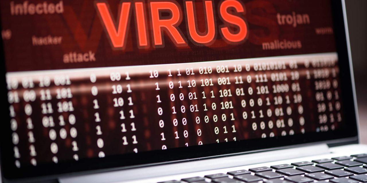 Tipos de vírus: quais são as maiores fontes e como evitar?