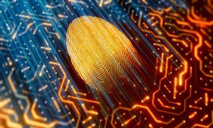 Os tipos de ataques cibernéticos e a importância da proteção